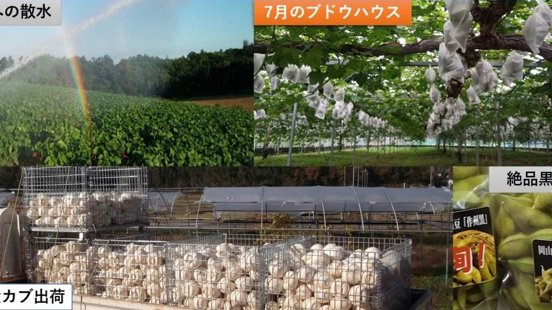 廣幡農園 hirohatafarm
