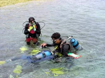 バラス島体験ダイビング半日コース