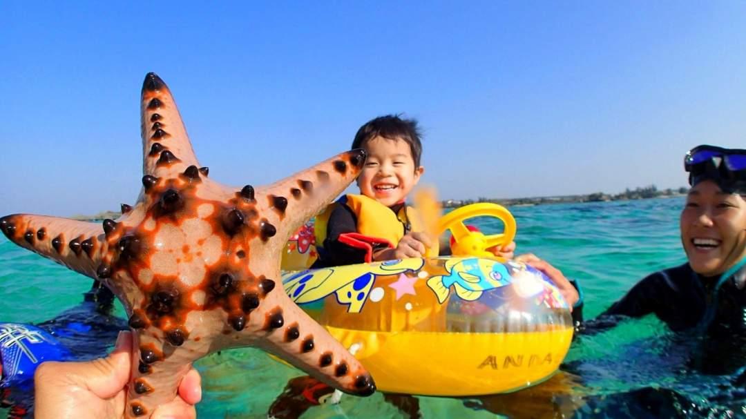 こんなヒトデも見つけたよ!! 海の中には、色んな生き物が住んでいます! 実際に、見て触れてみましょう!