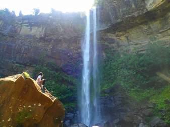 【沖縄・西表島】【人気No.1】「ピナイサーラの滝×奇跡の島」西表島プレミアム1日プラン【写真データ無料】