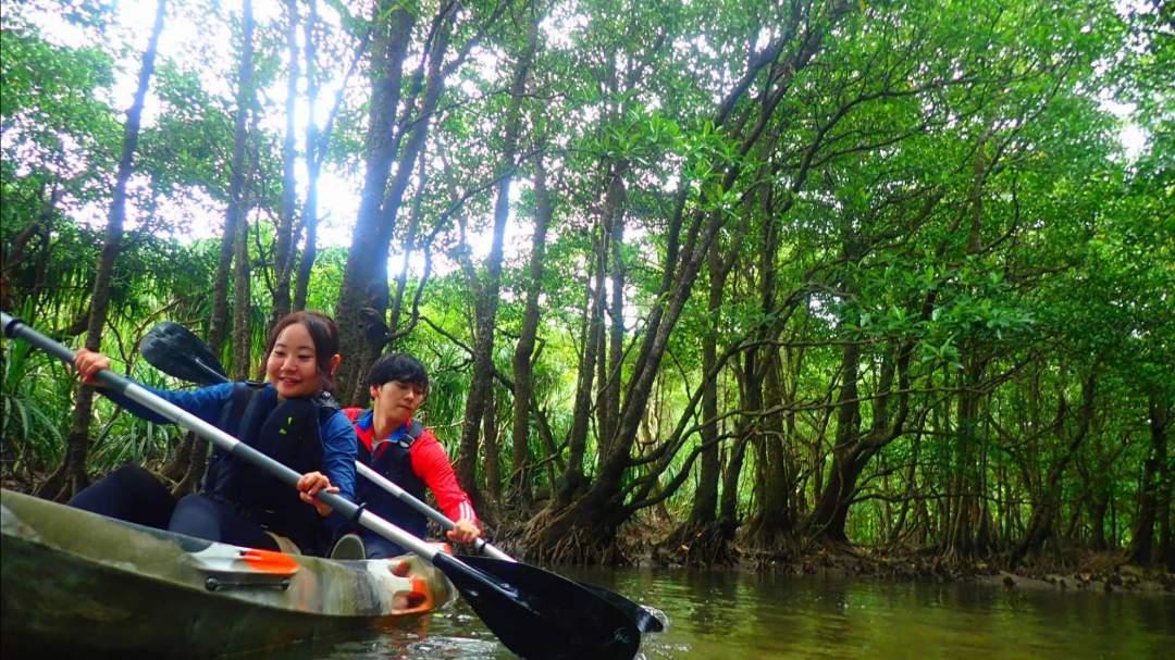 カヌー(カヤック) 西表島のマングローブ林をカヌー(カヤック)に乗って進みます。目指すはピナイサーラの滝!