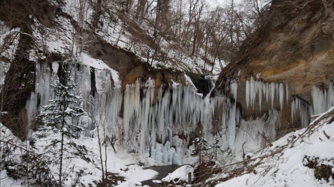 寒い日が続くと氷柱達もゆっくり成長します