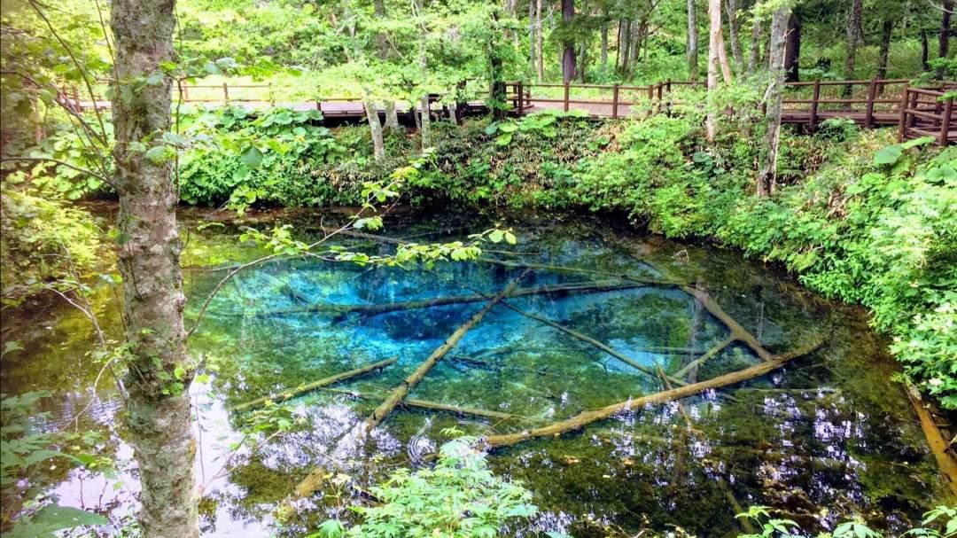 清里パノラマ周遊ツアー 神の子池