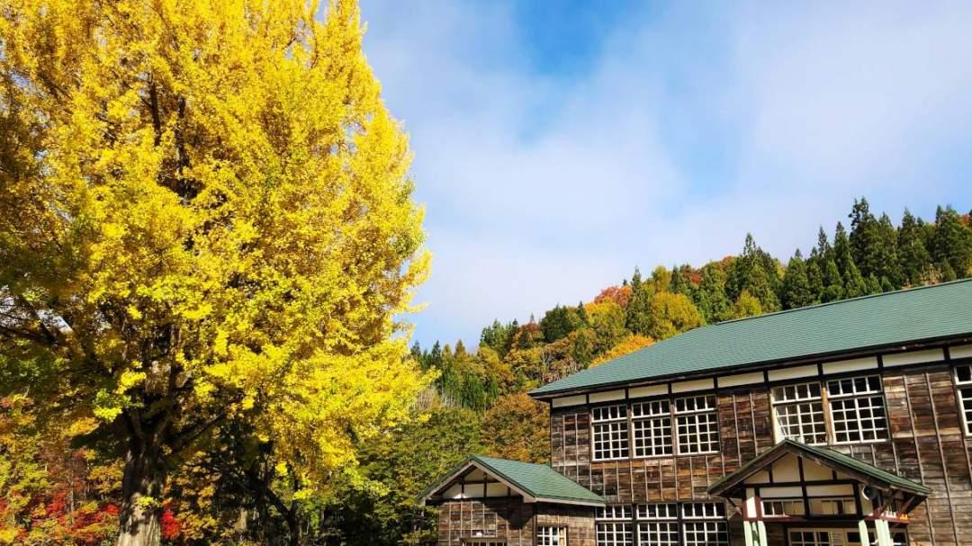 木造校舎と大イチョウが美しい「喰丸小」を、特別に貸し切って撮影