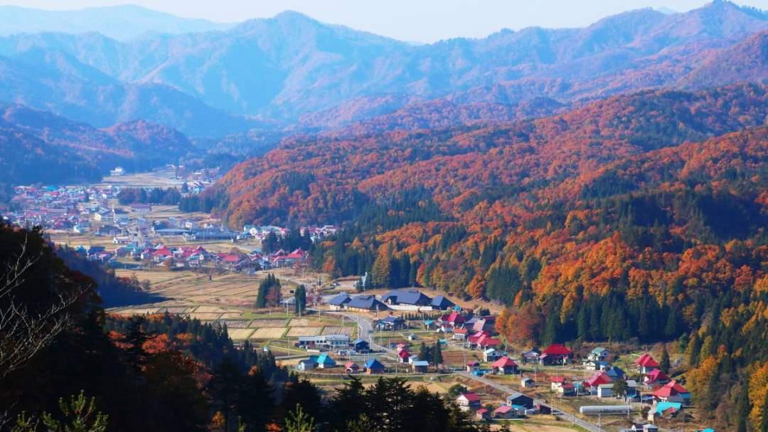「昭和の森 展望台」 紅葉に囲まれた集落の様子を撮影できます。