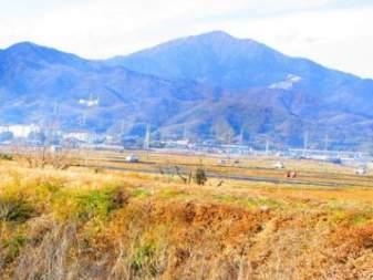 【丹沢大山登山】少人数でゆっくり・ ご近所登山 (往復ケーブルカー利用)