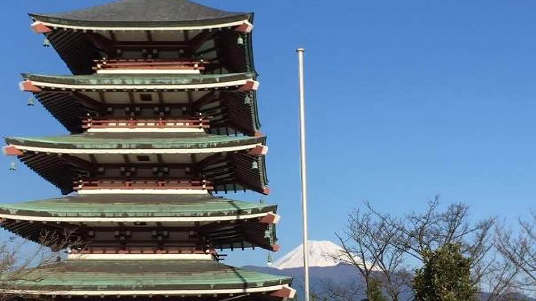 富士山をバックに五重塔や桜が見られます