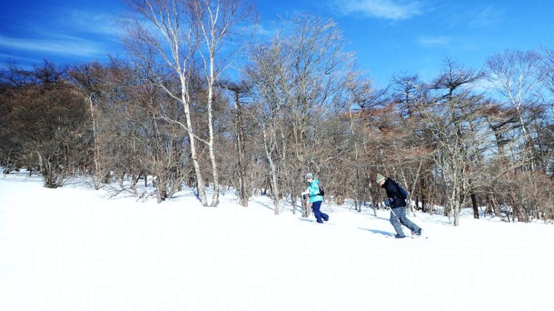 真っ白な雪原と青い空!この組み合わせ最高♪