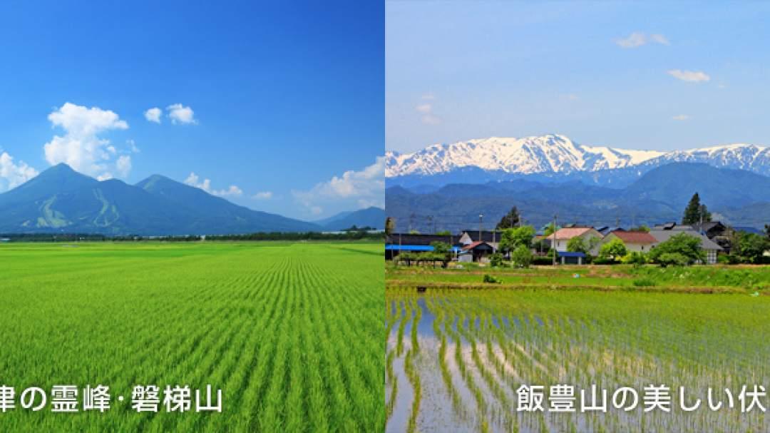 会津坂下町には鉄やケイ酸などの稲には欠かせないミネラル分を多く含んだ土壌が広く分布しています。 ミネラル豊富な土壌で育った稲は、天然のミネラルを吸収することで米の粒揃いが良く、美味しいお米に仕上がります。