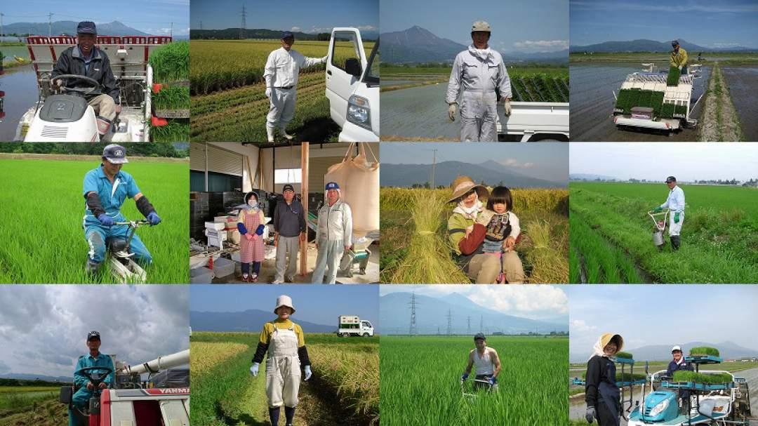 会津に鉄道が敷かれたのも米を運ぶためと言われるほど、昔からおいしいお米を作って来た会津地方。そんな美味しいお米を今も変わらず作っていけるのは、何より農家さんの努力そのものです。新しい技術を取り入れつつ、伝統的に引き継がれている技術を駆使して、坂下町の農家さんは日々研究を重ねながら稲を育てています。
