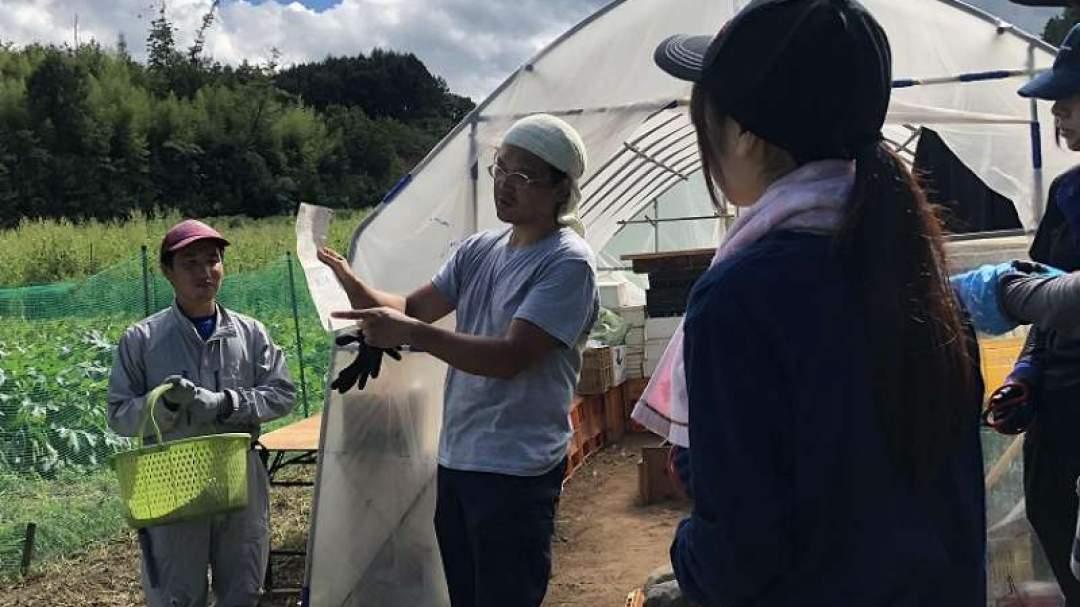 家庭菜園に興味のある方から、新規就農を希望する方まで、小海町直売所の会では農業体験も実施しております。 去年はやむなく中止となりましたが、今年は開催したいものです。